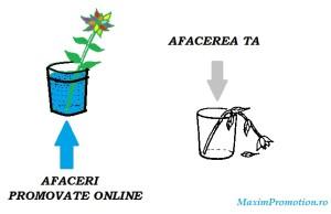 promovare-online